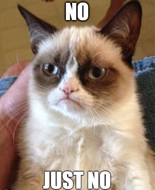 grumpy cat meme - NO